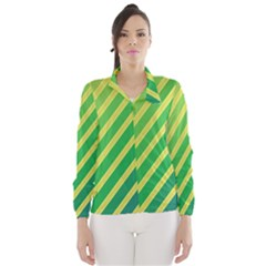 Green and yellow lines Wind Breaker (Women)