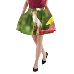 Female Ruby Throated Hummngbird A-Line Pocket Skirt
