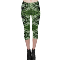 Colorado Lit0611071001 Capri Leggings