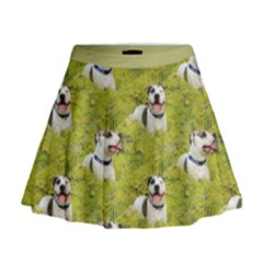 Pit Bull T-Bone Mini Flare Skirt