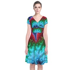 Amazing Special Fractal 25b Short Sleeve Front Wrap Dress