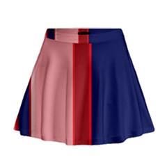 Pink and blue lines Mini Flare Skirt