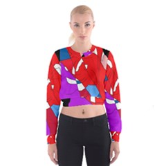 Colorful abstraction Women s Cropped Sweatshirt