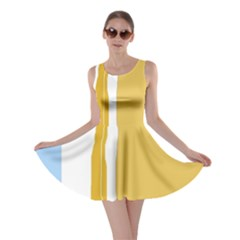 Blue and yellow lines Skater Dress