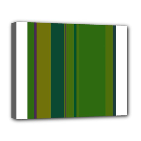 Green elegant lines Deluxe Canvas 20  x 16