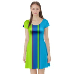 Blue and green lines Short Sleeve Skater Dress