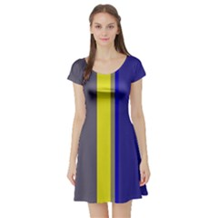 Blue and yellow lines Short Sleeve Skater Dress