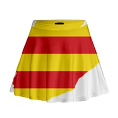Flag Map Of Catalonia Mini Flare Skirt