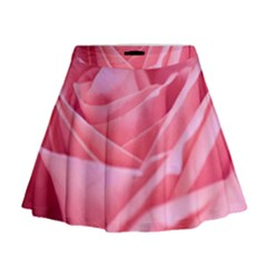 The Rose By Jenah Mini Flare Skirt