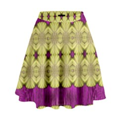 Purple Gold Floral And Paradise Bloom High Waist Skirt