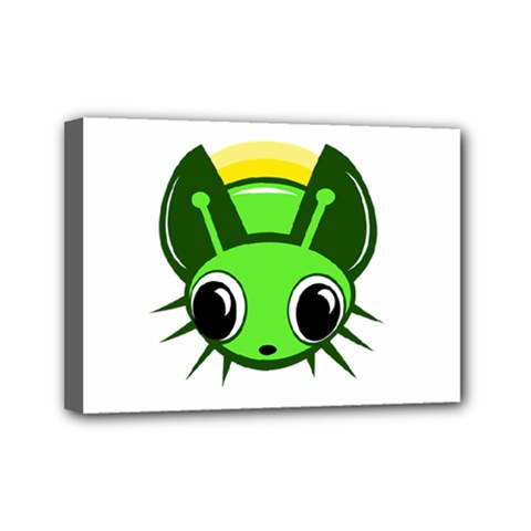 Transparent firefly Mini Canvas 7  x 5