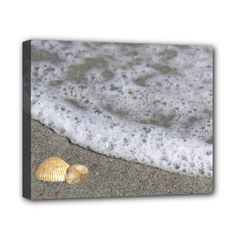 Seashells in the waves Canvas 10  x 8
