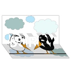 Black and white birds SORRY 3D Greeting Card (8x4)