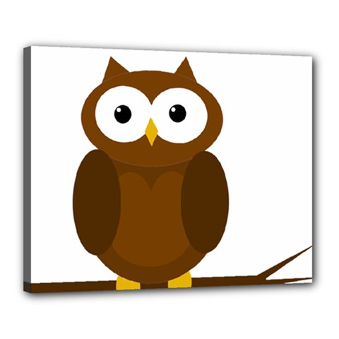 Cute transparent brown owl Canvas 20  x 16