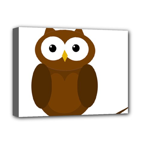 Cute transparent brown owl Deluxe Canvas 16  x 12
