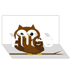 Cute transparent brown owl HUGS 3D Greeting Card (8x4)