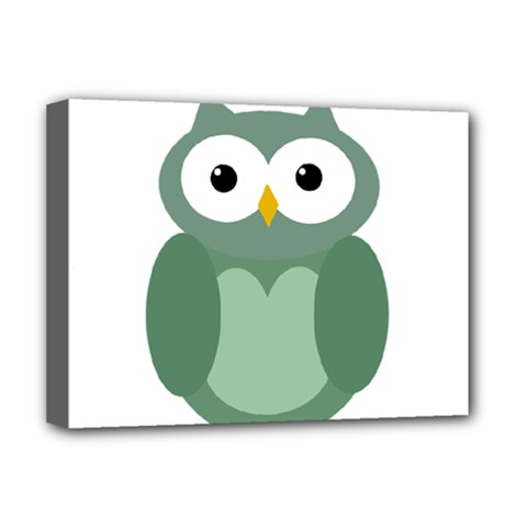 Green cute transparent owl Deluxe Canvas 16  x 12