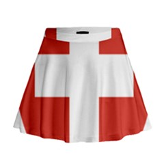 Coat Of Arms Of Switzerland Mini Flare Skirt