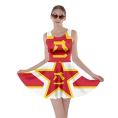 Roundel Of The People s Liberation Army Air Force Skater Dress