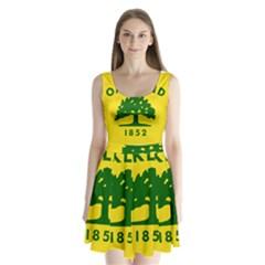 Flag Of Oakland, California Split Back Mini Dress