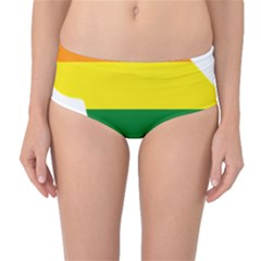 Lgbt Flag Map Of Washington, D C Mid Waist Bikini Bottoms