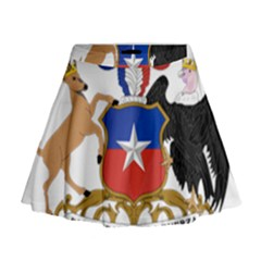 Coat Of Arms Of Chile  Mini Flare Skirt