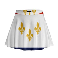 Flag Of New Orleans  Mini Flare Skirt