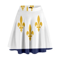 Flag Of New Orleans  High Waist Skirt