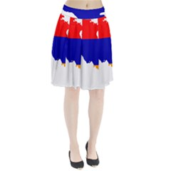 Flag Map Of Armenia  Pleated Skirt