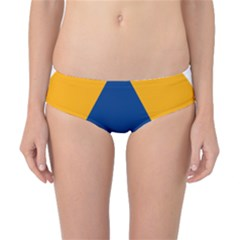 International Sign Of Civil Defense Roundel Classic Bikini Bottoms