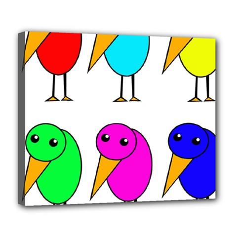 Colorful birds Deluxe Canvas 24  x 20
