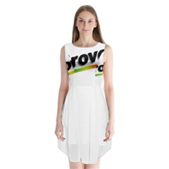 Flag Of Provo  Sleeveless Chiffon Dress