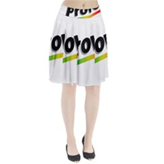 Flag Of Provo  Pleated Skirt