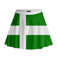 Flag Of Puerto Rican Independence Party Mini Flare Skirt