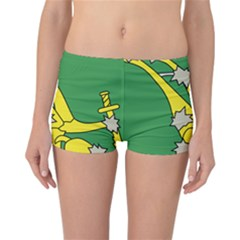 Starry Plough Flag Reversible Boyleg Bikini Bottoms
