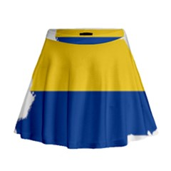 Flag Map Of Colombia Mini Flare Skirt