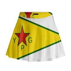 Flag Of The People s Protection Units Mini Flare Skirt