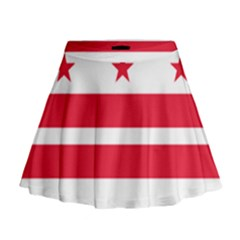 Flag Of Washington, Dc  Mini Flare Skirt