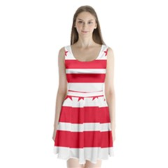 Flag Of Washington, Dc  Split Back Mini Dress