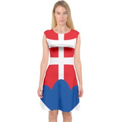 Slovak Air Force Roundel Capsleeve Midi Dress