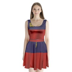 Flag Of Liechtenstein Split Back Mini Dress