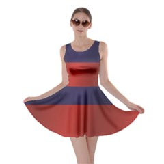 Flag Of Liechtenstein Skater Dress
