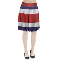 Flag Of Costa Rica Pleated Skirt