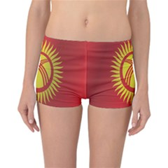 Flag Of Kyrgyzstan Reversible Boyleg Bikini Bottoms