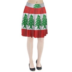 Flag Of Lebanon Pleated Skirt