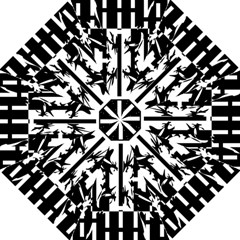 Black and white abstraction Folding Umbrellas