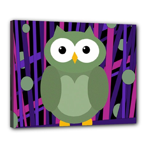 Green and purple owl Canvas 20  x 16