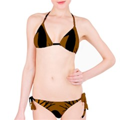 Halloween raven - brown Bikini Set