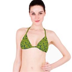 Green and blue Bikini Top
