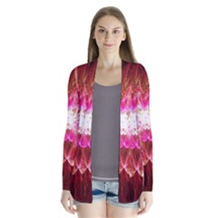 Flaminglilly Drape Collar Cardigan